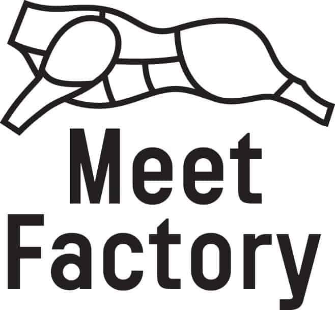 MeetFactory – logo